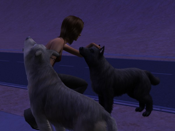 Dating Sims vargar